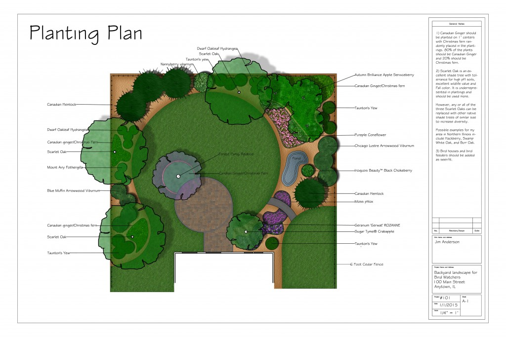 Backyard-Planting-Plan-Rendered